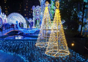 Christmas Light Tours
