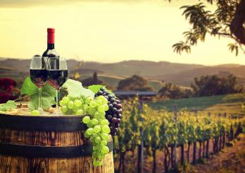 Private Nashville Winery Tours